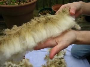 Lovely Fleece